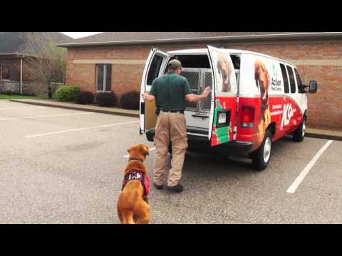1080p   ACT 15004 TV Commercial K9 Bed Bug WH