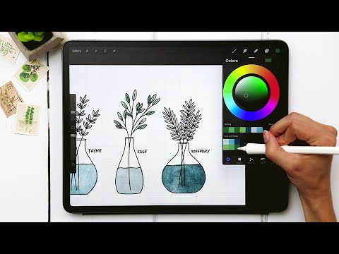 Draw 3 Line Art Herbs in Procreate