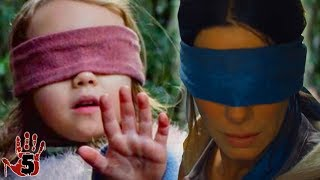 Top 5 Scary Bird Box Theories