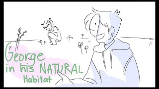 GeorgeNotFound in his natural habitat || Animatic