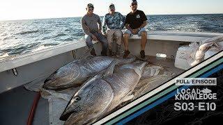 Cape Cod Harpooning Giant Bluefin Tuna - S03 E10 The Cape