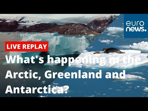 What's happening in the Arctic, Greenland and Antarctica? | Climate Now