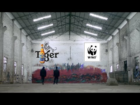 TIGER BEER AND WWF COME TOGETHER FOR #3890TIGERS IN 2017
