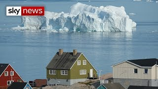 Why has Trump offered to buy Greenland?