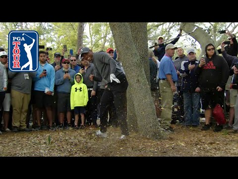 Tiger Woods' brilliant par save from the trees at Valspar at Valspar