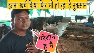 Dairy Farming: Success Story of A Dairy Farmer - From Engineering to