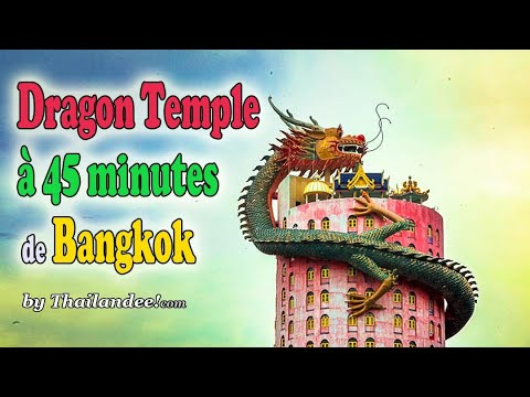 temple du dragon (wat samphran) à nakhon pathom
