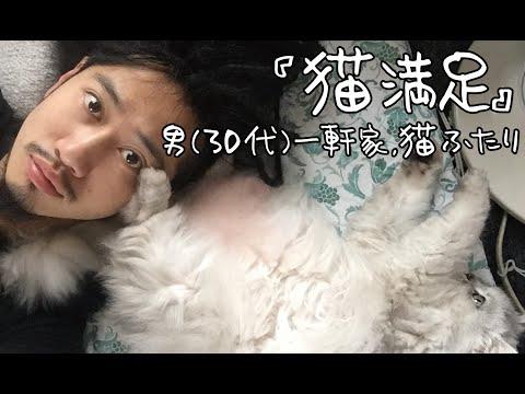 【猫満足】男(30代)一軒家,猫ふたり