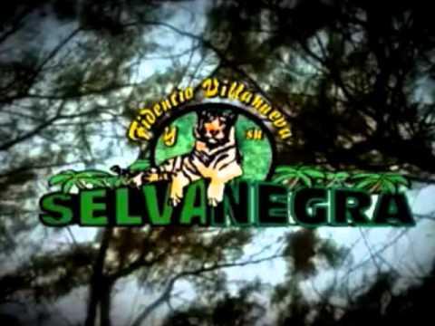 Selva Negra-Cumbia Marvella (En vivo 2012)