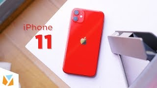 iPhone 11 Review: Watch this before you upgrade!
