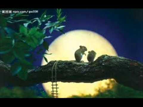 【月亮照著的所在】--江蕙