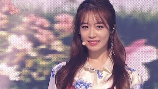 T-ARA 티아라 - TIAMO 띠아모 / 교차편집 Stage Mix
