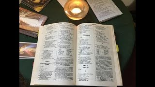 Preparing for the 7th Sunday in Ordinary Time