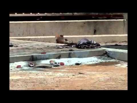 Baixar Mulher-bomba mata seis na Nigéria