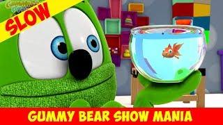 Gummy's Lucky Day (SLOW-MO) - Gummy Bear Show MANIA