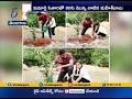 Mahesh Babu  Takes up 'Green Challenge'