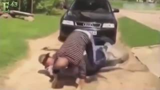 BULLY FAIL INSTANT KARMA COMPILATION AND INSTANT JUSTICE 2016 PART 15