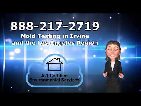 Mold Testing Stanton