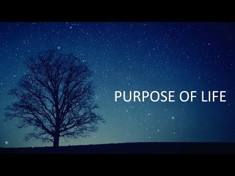 RVAGE - Purpose Of Life (Official Videoclip)
