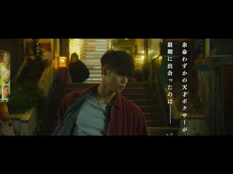 映画『初恋』特報