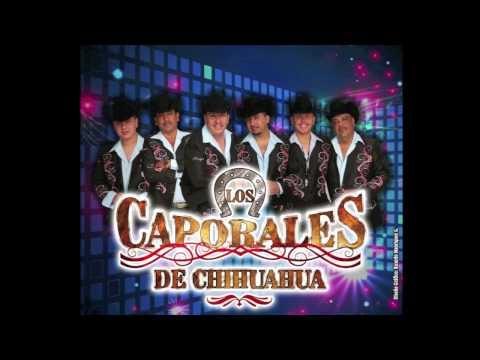 Los Caporales De Chihuahua,,El Corrido De Los Mendoza.