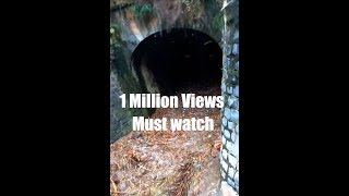 Kaveri river main channel water comes after 8 months(In Hulikere Tunnel) please like share and subsc