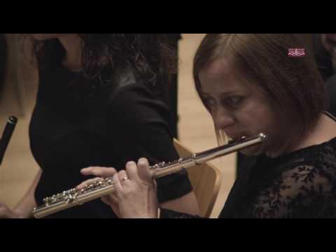 AGRUPACIÓN ARTÍSTICO MUSICAL SANTA BÁRBARA DE PILES - Certamen Provincial de Valencia 2017