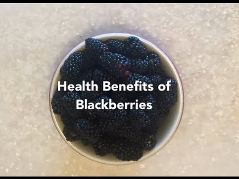 The Health Benefits of Blackberries - The FruitGuys