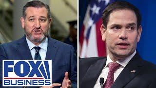China sanctions 11 Americans, including Senators Cruz and Rubio