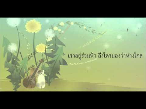 ดวงดาวในดวงใจ - พีท พล