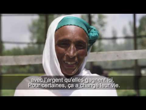Chapitre 3: Ethiopie (REDD+ et l'avenir des forêts africaines)