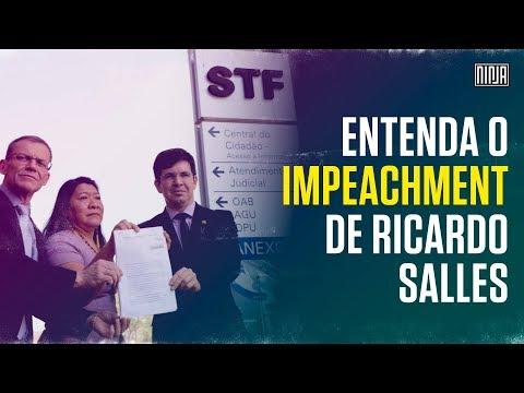 Rede vai ao STF pedir impeachment do ministro Ricardo Salles