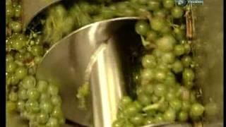 Ako sa to robí - Víno