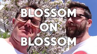 The Science of Blossom: Gastronaut