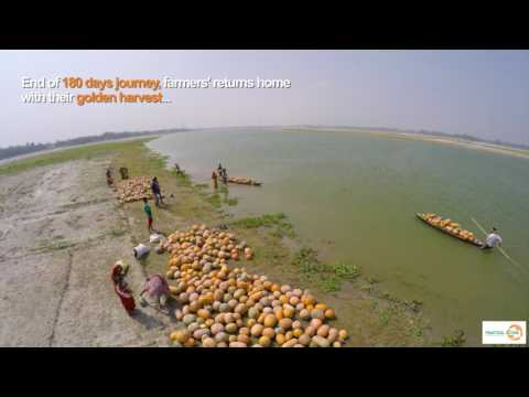 Sandbar Cropping: Hope 4 Millions @ Practical Action Bangladesh