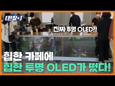 [현장+]힙한 카페에 힙한 콜라보, LGD 투명 OLED가 떴다!