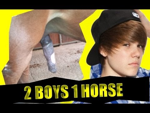 Two guys and one horse video