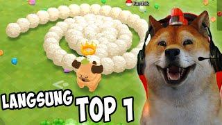 GAME CACING PALING LUCU! - Sweet Crossing: Snake.io