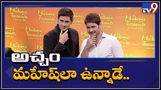 Mahesh Babu thanks Madame Tussauds on wax idol launch..