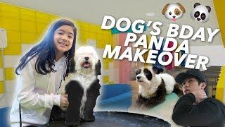 DOG'S BIRTHDAY PANDA MAKEOVER | Ranz and Niana