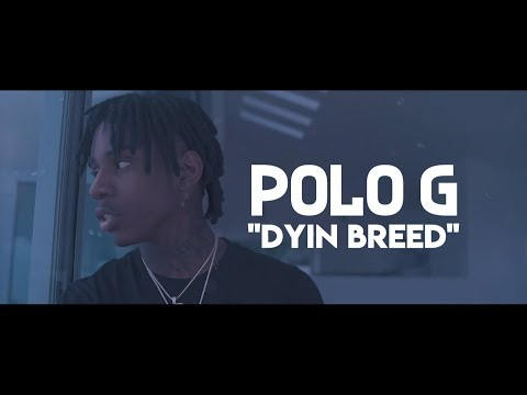 Polo G - Dyin Breed (Lyric Video)