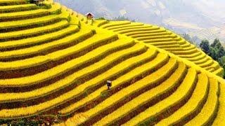 VietnamDiscovery-The Beauty of North moutainous Vietnam (Cảnh đẹp Tây Bắc từ trên cao)