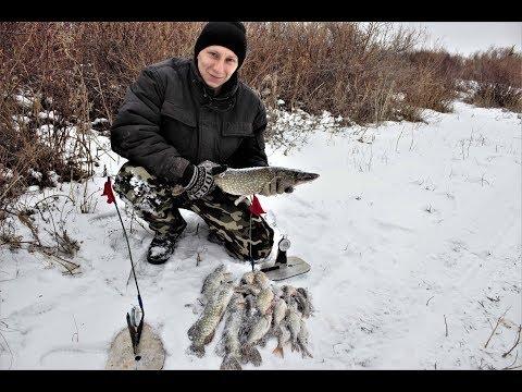Ловля щуки зимой на жерлицы, ловля крупной щуки, практические Благоприятные условия для клева