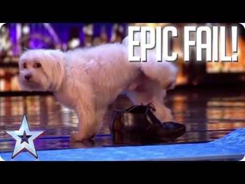 TOP EPIC FAILS!   Britain's Got Talent