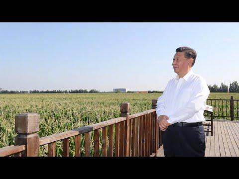 Xi Jinping inspects NE China's Jilin Province