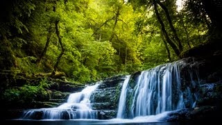 Guia de la Selva Negra -Hochschwarzwald-