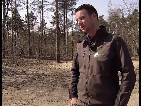 Boswachters controleren drukte natuurgebieden