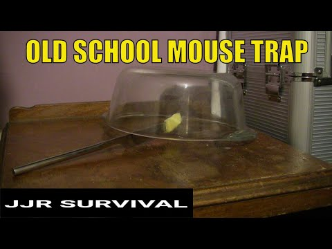 old style jar mouse trap