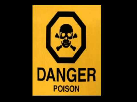 cd poison dj popi reggae