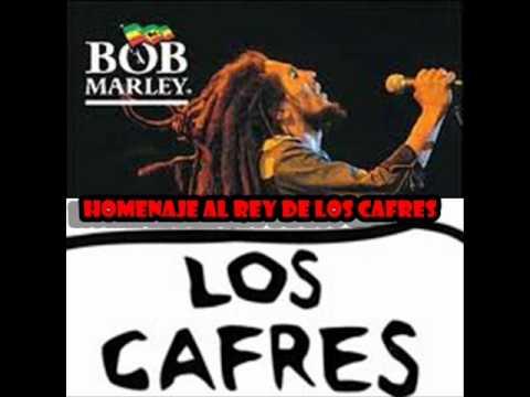 Tributo de Los cafres&Pericos al rey Bob Marley